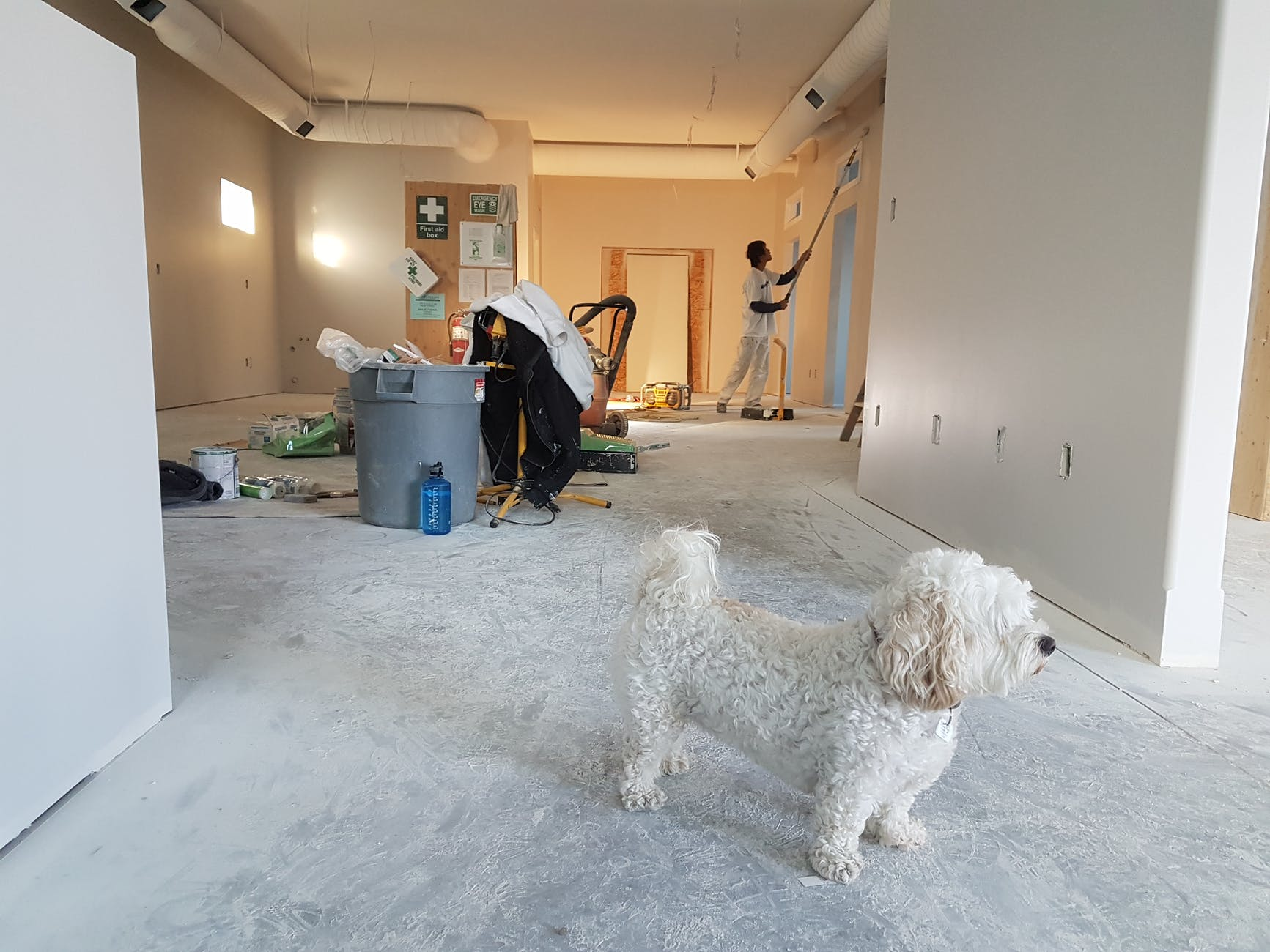 North York, ON House Painters